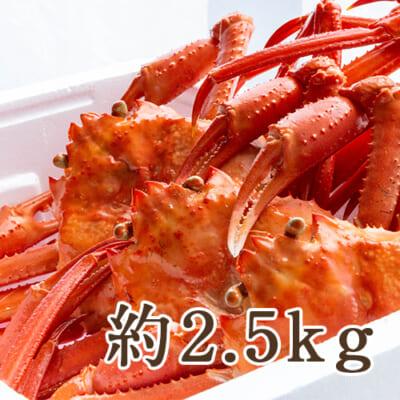 日本海産 紅ズワイガニ 約2.5kg