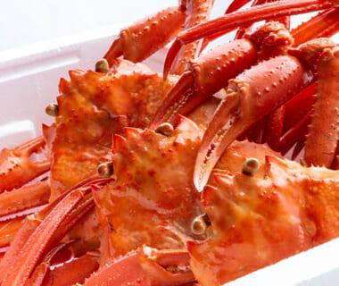 日本海産 ゆで紅ズワイガニ