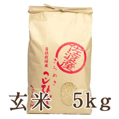 佐渡産コシヒカリ 玄米5kg