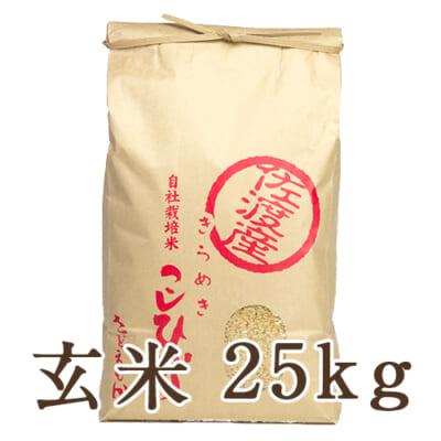 佐渡産コシヒカリ 玄米25kg
