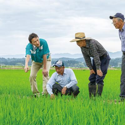 栽培から販売までをサポートする農家の心強い味方