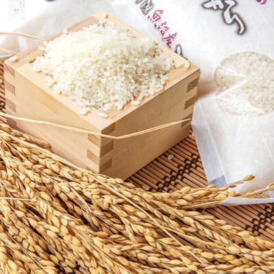 名産地米の美味しさ、お届けします