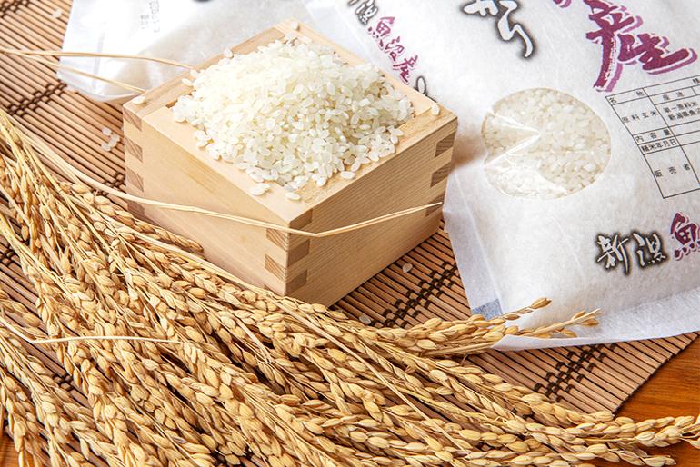 農家と直接協力しながら作り上げたお米ギフト