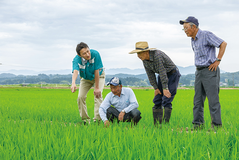 精密なチェックで農家・産地のブランドを守る