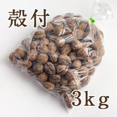 魚沼産 鬼クルミ(殻付)3kg