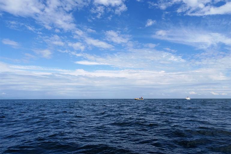 ミネラル豊富な海洋深層水が育む美味しさ