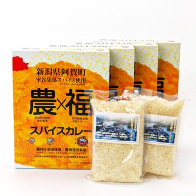 農×福スパイスカレー4パック・コシヒカリ2合セット