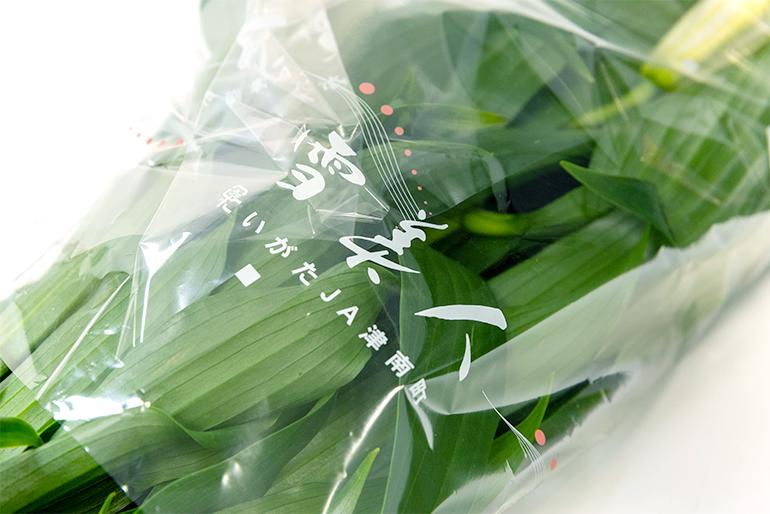 美しく咲き誇る大輪!JA津南町のユリ「雪美人」