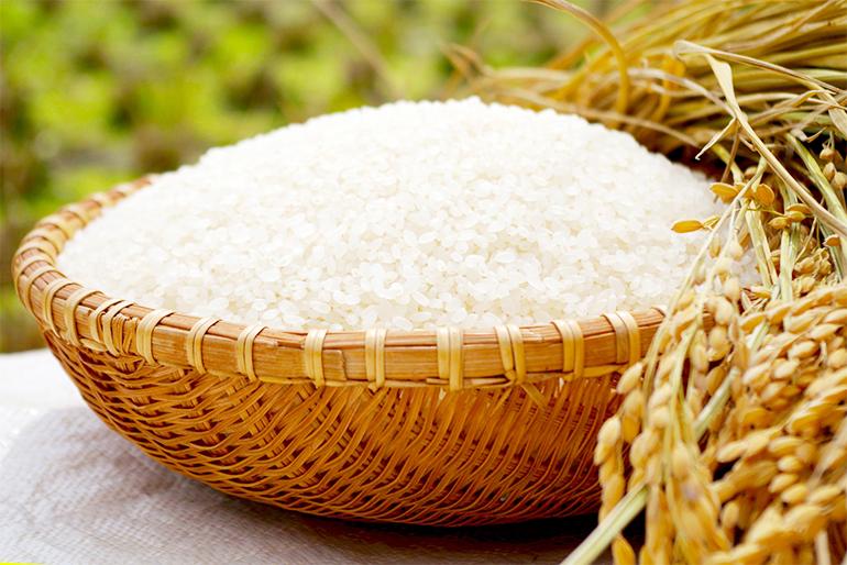 良質な燕市農家産米と、上質な水が生み出した米焼酎