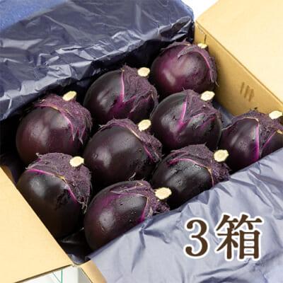 越の丸茄子 3箱