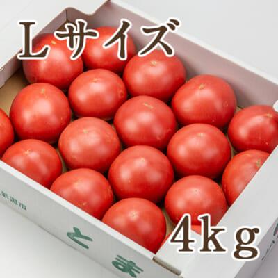 新潟産トマト「桃太郎グランデ」Lサイズ約4kg