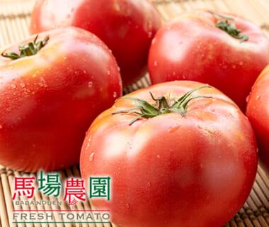 新潟産トマト「桃太郎グランデ」