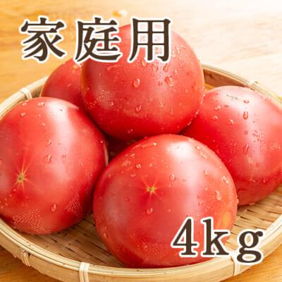 【家庭用】新潟産トマト「桃太郎グランデ」約4kg