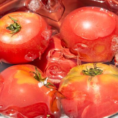 旨味成分がたっぷりの美味しいトマト