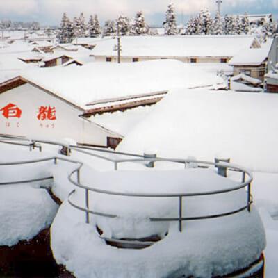 雪に囲まれた蔵は酒造りに最適