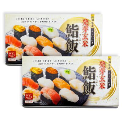 新潟産こしいぶき 発芽玄米鮨飯 3パック×2箱入