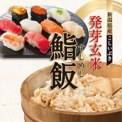 新潟産こしいぶき 発芽玄米鮨飯