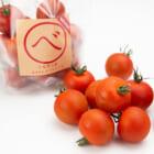 予約注文:新潟産ミディアムトマト「べ」