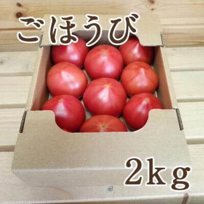 新潟産トマト「ごほうび」2kg