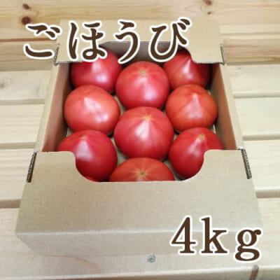 新潟産トマト「ごほうび」4kg