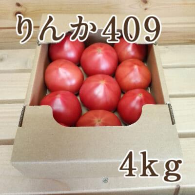新潟産トマト「りんか409」4kg