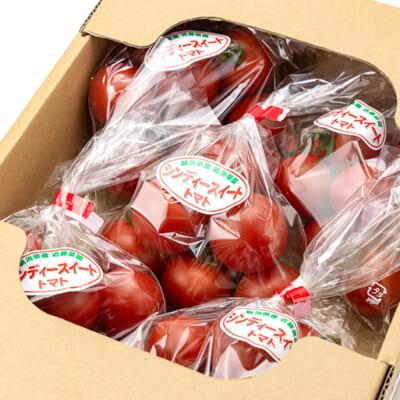 みずみずしく真っ赤なトマトを厳選!