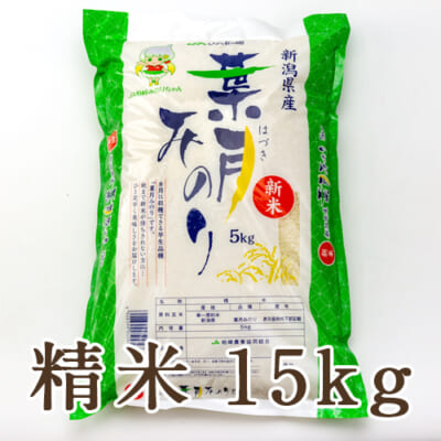 新潟県産 葉月みのり 精米15kg
