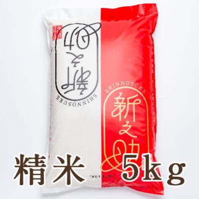 新潟県産 新之助 精米5kg