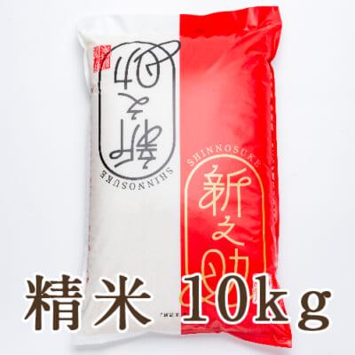 新潟県産 新之助 精米10kg