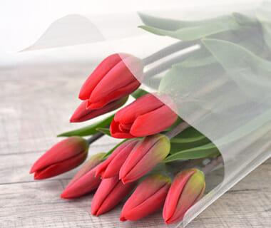 チューリップ(切り花)