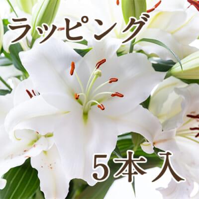 【ラッピング】ユリ(切り花)5本入り