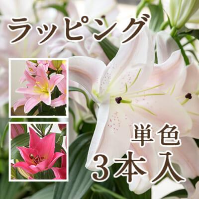 【ラッピング】ユリ(切り花)ピンク 3本入り