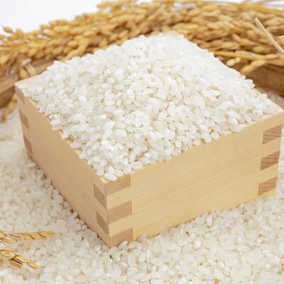 一粒一粒が大きく立派なお米