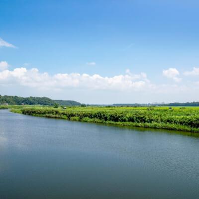 雄大な信濃川の恵みが旨いお米を生み出す