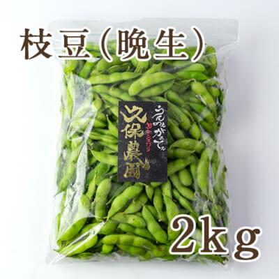 枝豆 晩生品種 2kg
