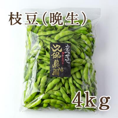 枝豆 晩生品種 4kg