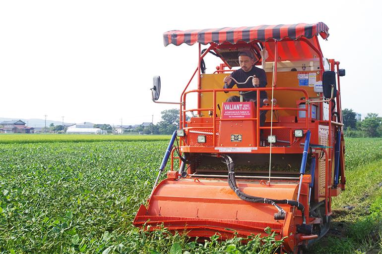 久保農園の枝豆出荷を支える専用コンバイン