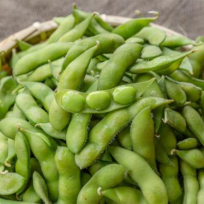 太陽の光をたっぷり浴びて育った絶品枝豆
