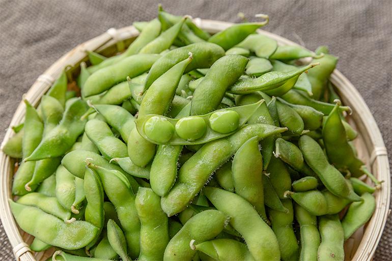 出荷時に「一番美味しい旬の枝豆」をお届け!<br />