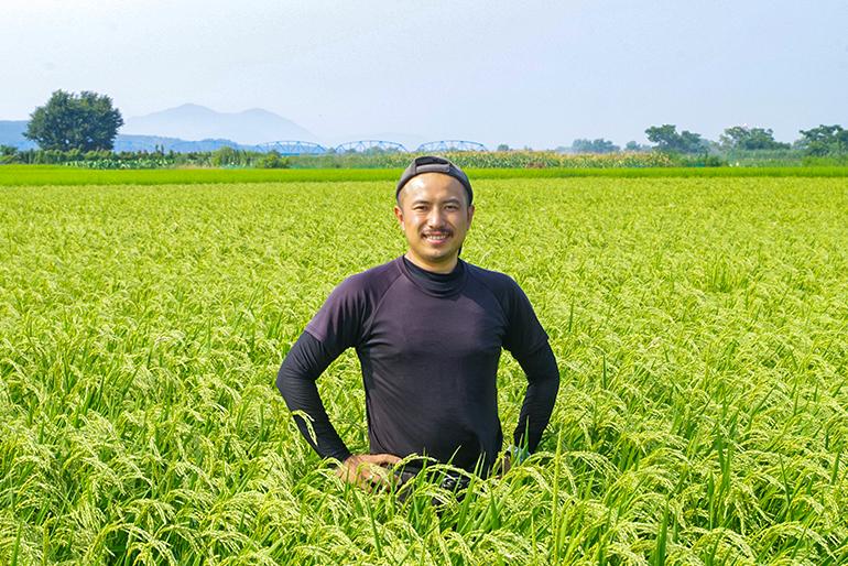 コシヒカリ「本来の味」が際立つ米作り