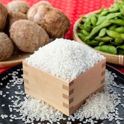 お米に、新潟らしい野菜を添えて!