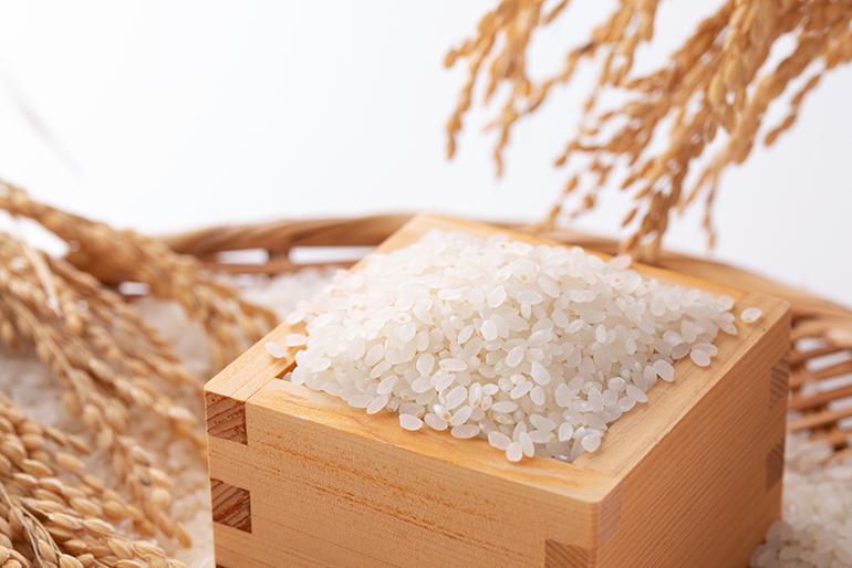お米が育つ限界の環境で栽培したコシヒカリ