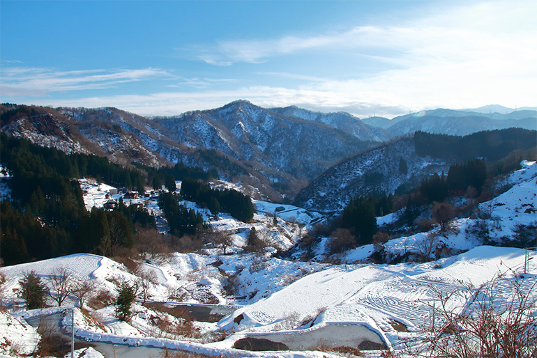 3.潤沢な水と綺麗な土壌を育む積雪