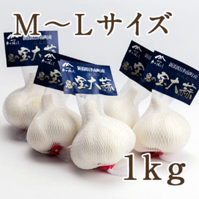 津南産 鬼乃宝大蒜(にんにく)M~Lサイズ 1kg