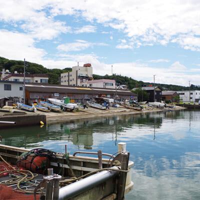 寺泊の豊かな海が育んだ鮮魚