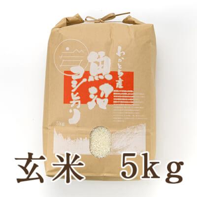 魚沼産コシヒカリ(棚田栽培・特別栽培)玄米5kg