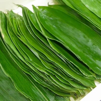 鮮やかな緑色が美しい生笹を使用