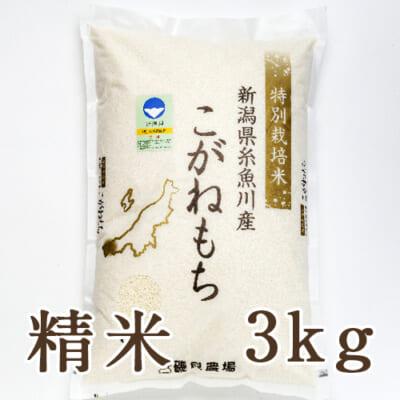 糸魚川産こがねもち 精米3kg