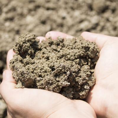 自家製の有機ぼかし肥料で取り組む土づくり
