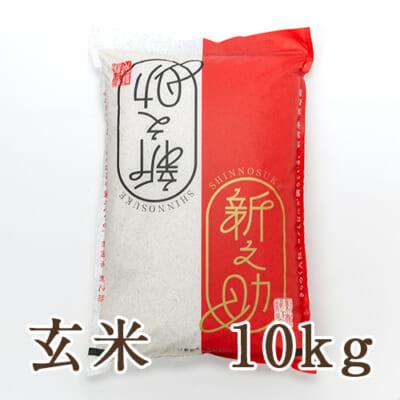 新潟産 新之助 玄米10kg